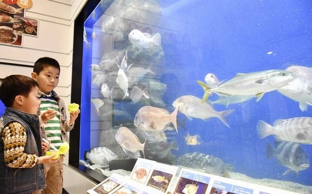 昨年度の来館者が過去最多となった県海浜自然センター=福井県若狭町世久見