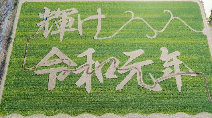 菜の花畑に出現した、新元号「令和」をテーマにした花文字=9日、胎内市築地の長池憩いの森公園(本社小型無人機から)