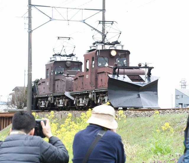2年ぶりに復活する桜とラッセル車「テキ521」を撮影するイベント=2017年4月、福井県永平寺町東古市