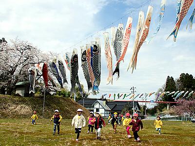 子どもたちの元気な声響く 富山市山田・沢連でこいのぼり65本