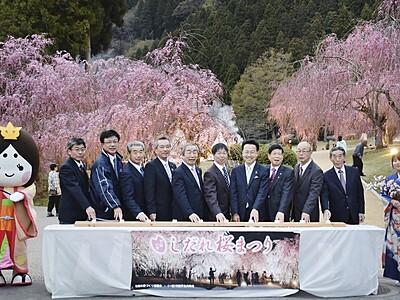 しだれ桜、山里に100本 福井・坂井でまつり