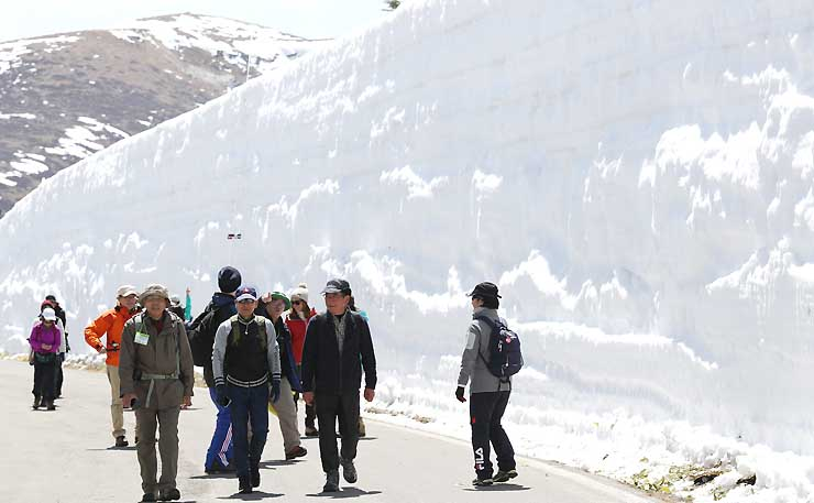 そびえ立つ雪の壁を楽しみながら歩く参加者たち=18日午前11時24分、群馬県中之条町