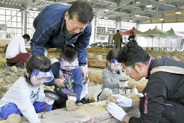福井県大野市化石発掘体験センター「HOROSSA!」が再開し、化石を探す園児ら=4月17日、同市角野