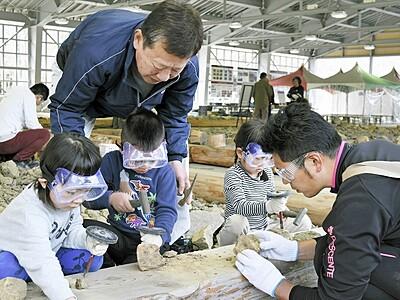 化石発掘体験センター「HOROSSA!」再開 福井県大野市