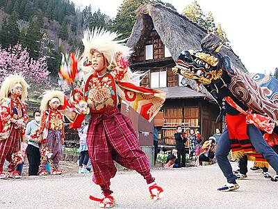 合掌集落に獅子舞躍動 南砺相倉の春祭り