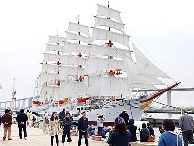 平成最後の優美な姿 海王丸250回目の総帆展帆