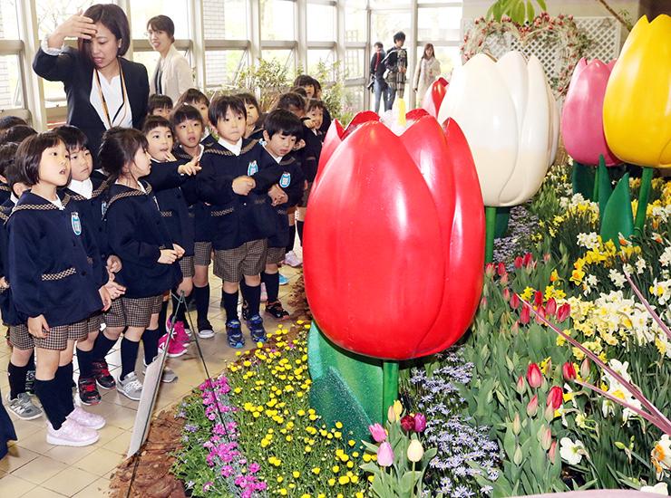メルヘンの世界を3000本の花で表現した県花総合センターの特別展