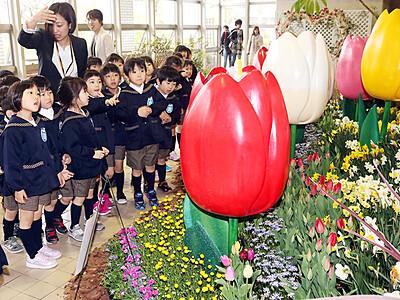 花3000本でおやゆび姫 県花総合センターで特別展