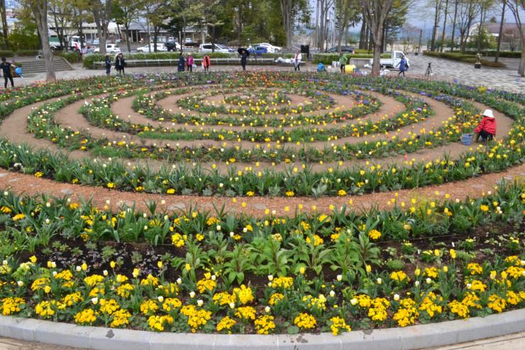 約150種類、計1万5000株以上の花々を植えた三郷文化公園内の円形花壇