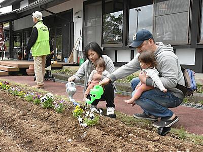 花植え大型連休に彩り 千曲の姨捨観光会館がイベント