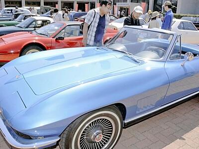 クラシックカー乗りませんカー 5月5日、福井で体験催し