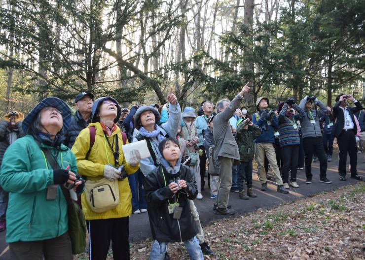 塩嶺小鳥バスで塩嶺御野立公園を訪れ、野鳥を観察する人たち