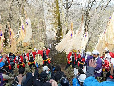 諏訪大社下社、大祭へ始動 22年御柱「仮見立て」