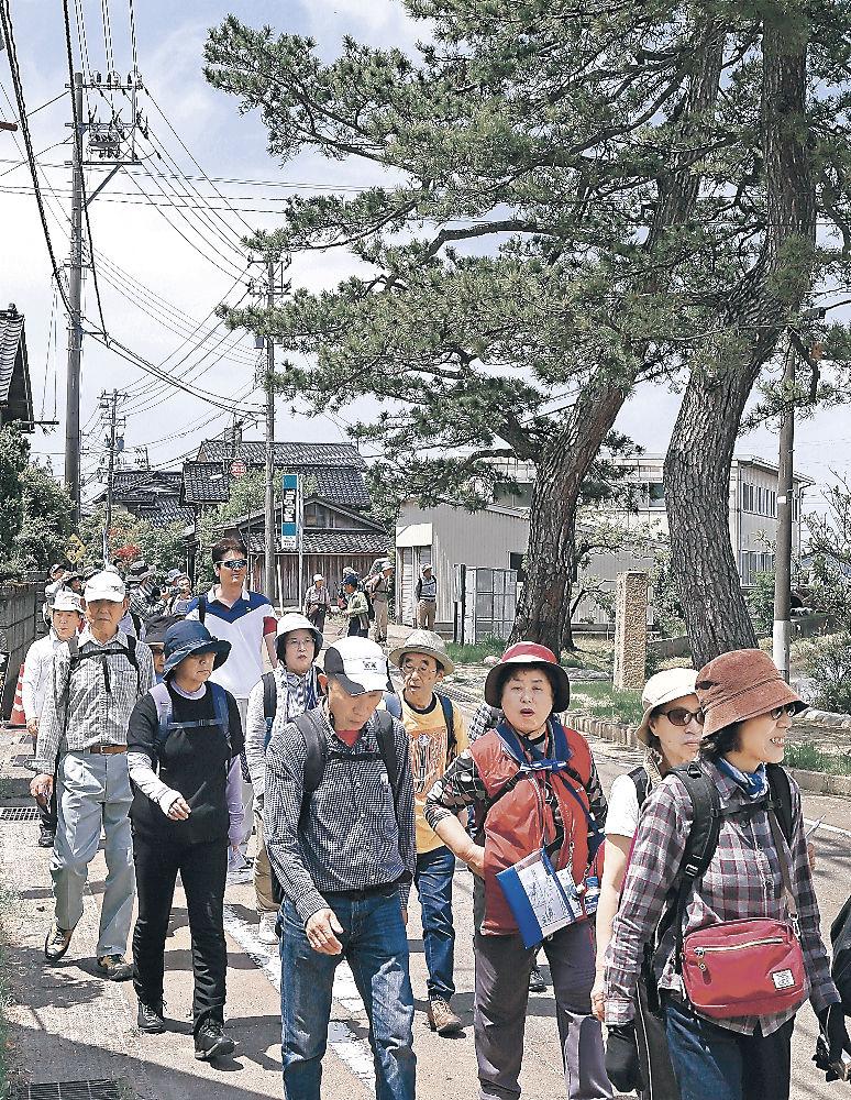大名行列の気分で歩く参加者=金沢市北森本町