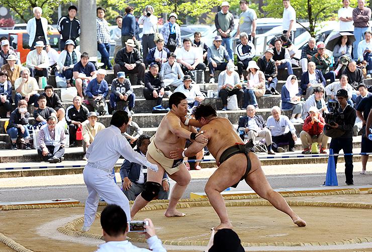 多くの観客が見守る中、熱戦を繰り広げる男子シニア重量級の県勢・黒川(中央)=グリーンパークだいもん相撲場
