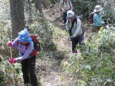 中ア念丈岳~越百山の登山道 松川町と飯島の有志ら整備