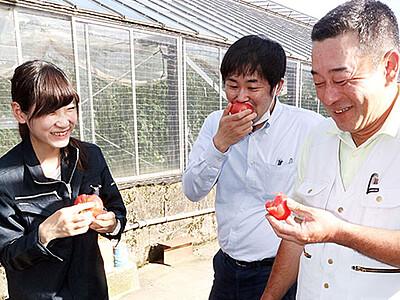 「しんきろうトマト」味良し 魚津、生産者が太鼓判