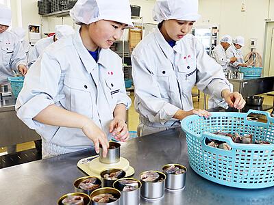 滑川産特製サバ缶考案 滑川高生、龍宮まつりで販売