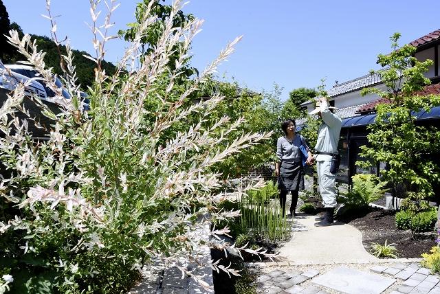 中嶋造園が公開している庭。それぞれの個性が楽しめる=5月22日、福井県高浜町馬居寺