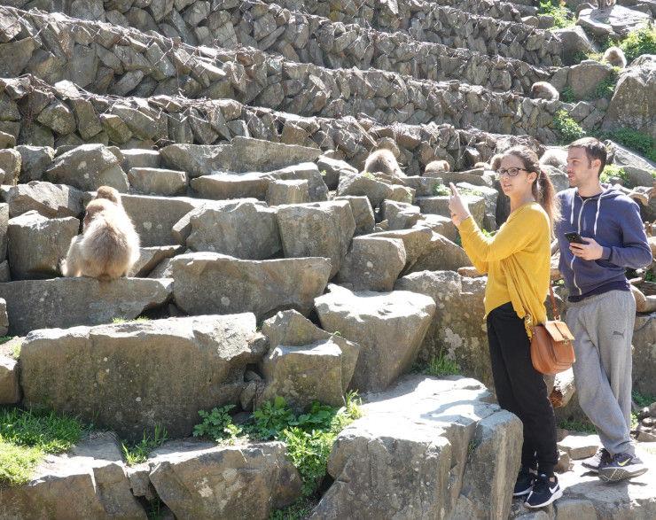 地獄谷野猿公苑を訪れた外国人旅行者=10日、山ノ内町