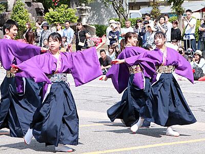 よさこい躍動 庄川観光祭最終日