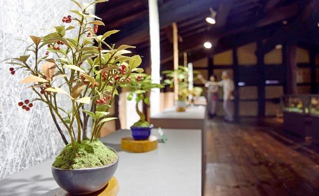 本物そっくりの質感で作られている和紙盆栽の作品展=6月12日、福井県越前市の卯立の工芸館