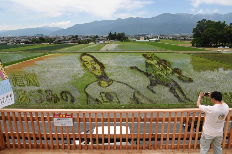 展望台からは田んぼアートとともに北アルプスや田園風景が一望できる