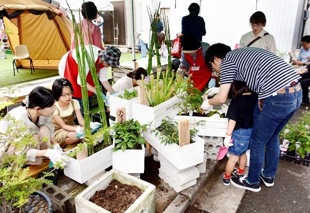 プランターに植物を植える参加者=6月15日、福井県福井市の新栄テラス