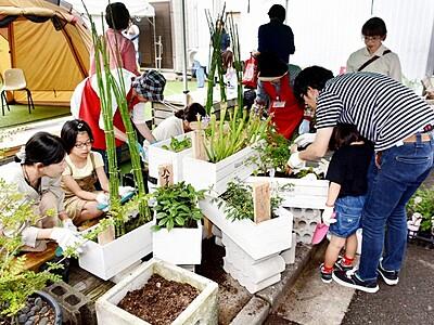 まちなかを花で彩る 福井・新栄商店街で催し