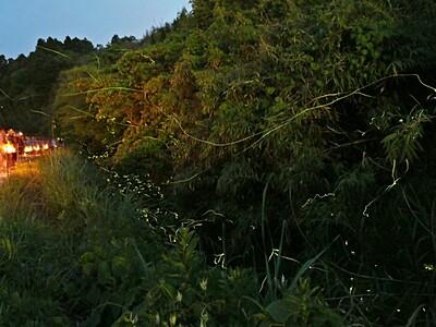 潟上温泉でホタル祭り 22、23日 佐渡市新穂