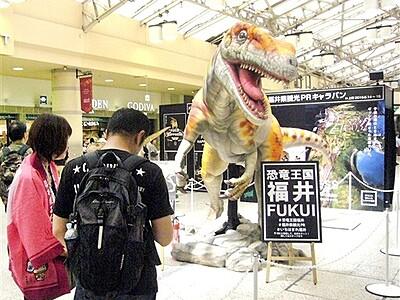 「恐竜王国」上野駅でPR 福井県が特設ブース