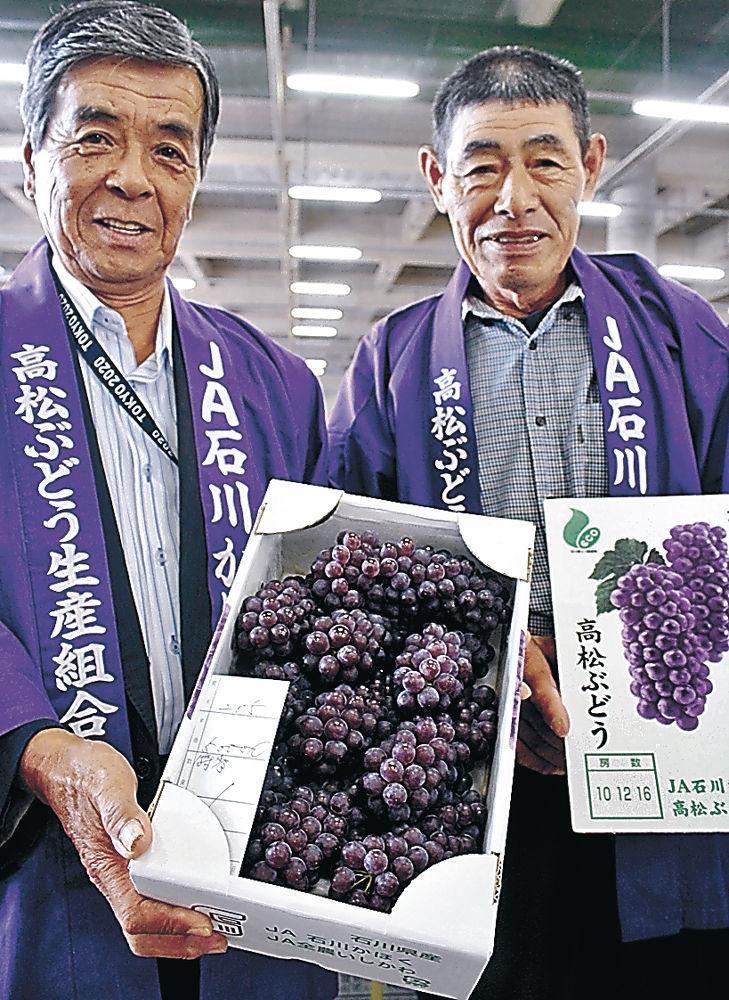 1箱5万円で競り落とされた「特秀」の高松ぶどう=市中央卸売市場