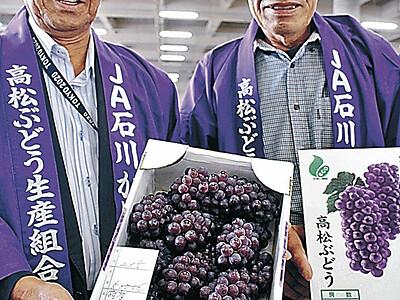 高松ぶどう、1箱5万円 栽培100周年の初競り