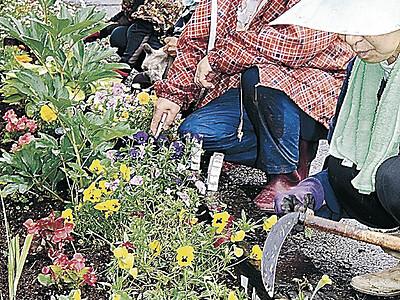 能登さくら駅、1年通し花の名所に 穴水、女性グループが植栽
