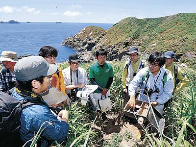 「渡り鳥の楽園」卵の保護で環境省 ドブネズミ駆除作戦