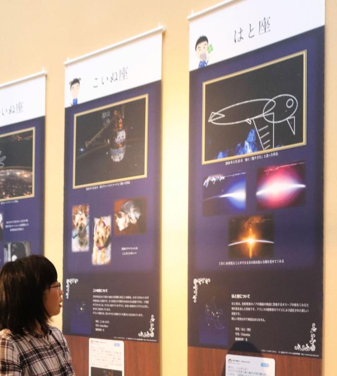 「はと座」のイラスト(右上)など油井さんの作品を展示した会場