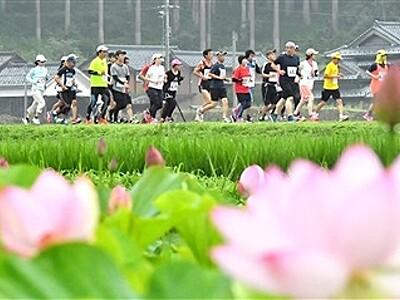 花はすマラソンに2191人 福井・南越前で2年ぶり