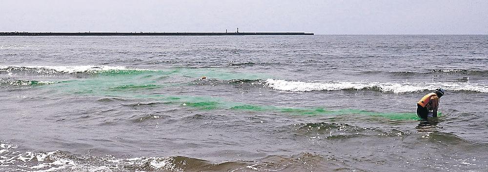 着色剤を投入し、離岸流の強さや向きを調査する職員=内灘町の内灘海水浴場