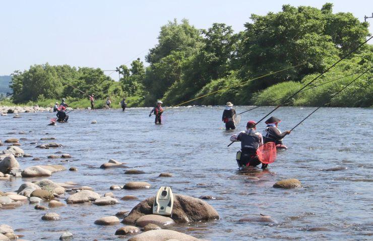 アユの友釣りが解禁され、大勢の釣り客が訪れた魚野川=10日、南魚沼市塩沢地区