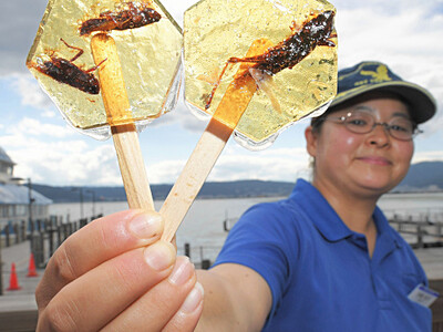 インパクト「バッタ飴」 諏訪湖畔売店、観光客に人気