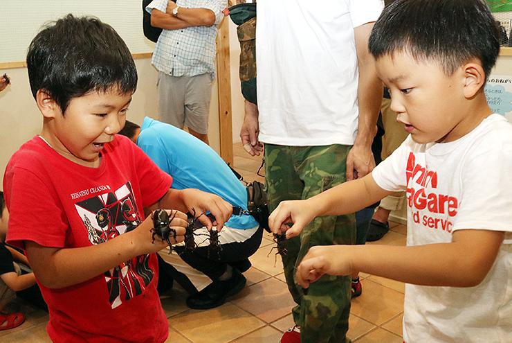 カブトムシやクワガタムシを手にはしゃぐ子どもたち
