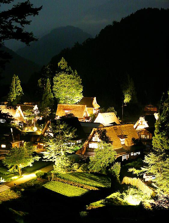 ライトに照らされ、木々の濃い緑と共に山あいに浮かび上がる合掌造り集落