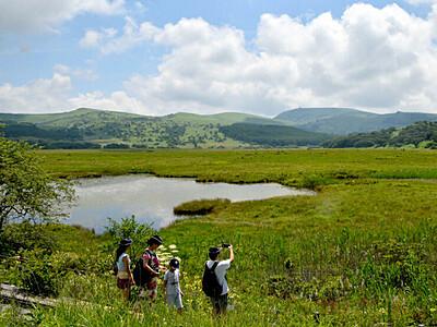 山の日「涼」求めて 霧ケ峰・八島ケ原湿原