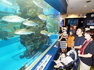 輝く水中の世界 魚津水族館