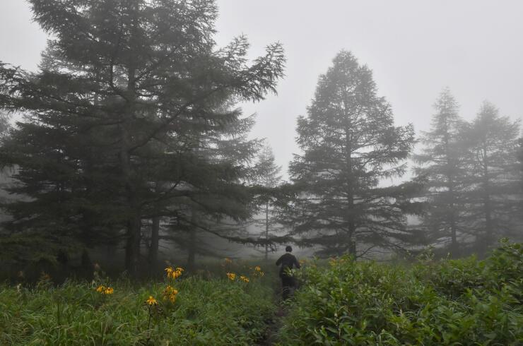 深い霧に包まれた、火山館から賽の河原へ向かう浅間山登山道=19日午後3時36分