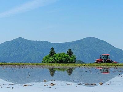 大野市の田園インスタ映え 写真コンテスト、787点展示