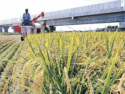 石川県産米「ひゃくまん穀」収穫 加賀地区でスタート