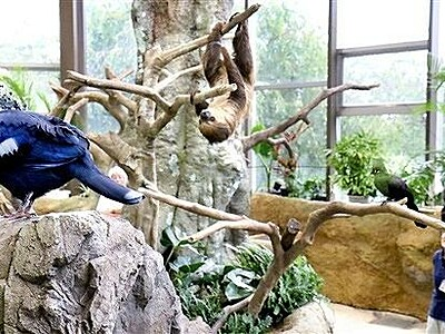 動物と触れ合える足羽山遊園地動物舎 入園10万人超