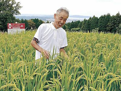 七尾の棚田米 4年連続最高賞