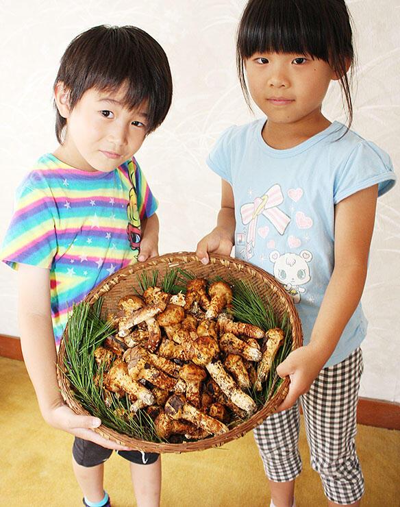 初収穫された地物のマツタケを持つ園児